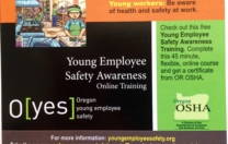 Young employee safety awareness online training – now available!